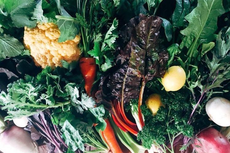 極上の屋久島野菜の宅配サービスがすばらしい